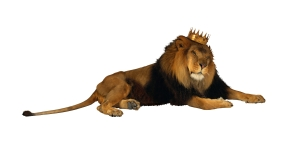 934_4077742-lionwithcrown